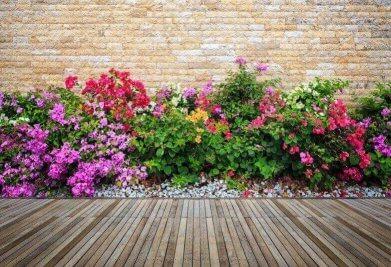 דק איפאה עם פרחים